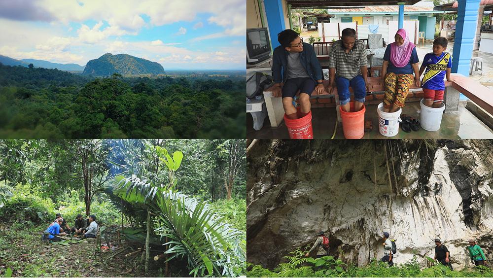 세계테마기행 [오지 말레이반도-제1부 숨겨진 정글을 만나다, 바투쿠라우]
