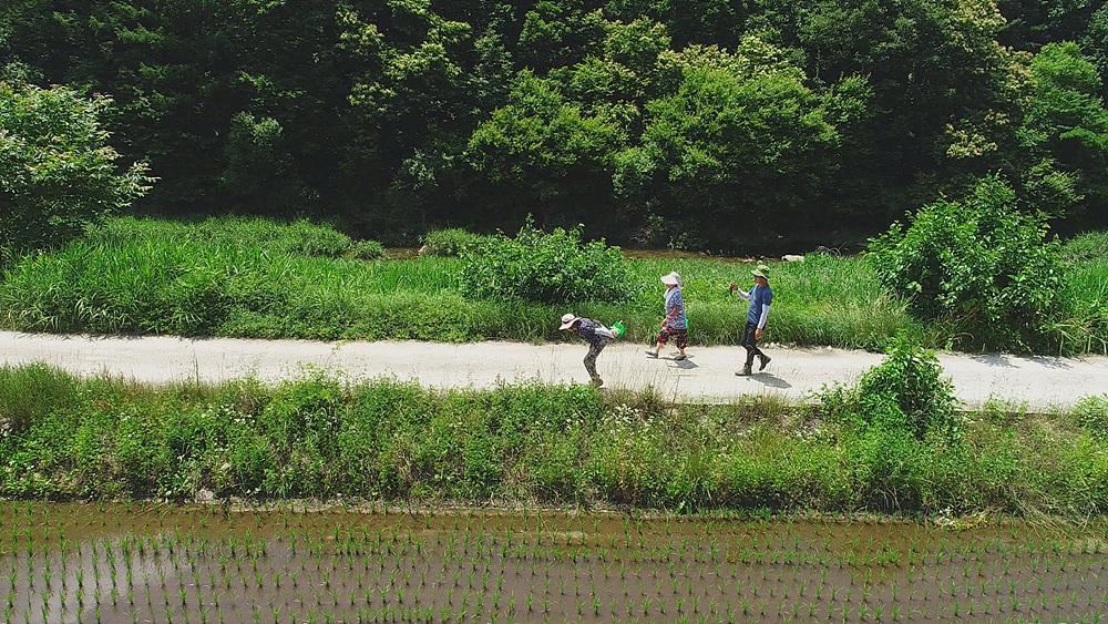 한국기행 [시골 방송 온에어 3부. 새울 마을에 무슨 일이 생기면]