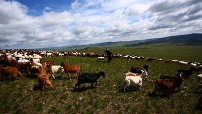 세계테마기행 - 몽골,바람이 전하는 이야기 3부 칭기즈 칸의 제국을 걷다