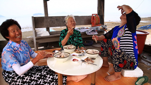 한국기행 - 서해섬을 만나다 4부 삶은, 고파도