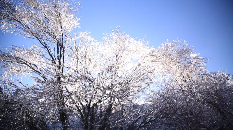 한국기행 - 겨울 지리산에 가면 1부 얼음꽃 활짝 핀다네