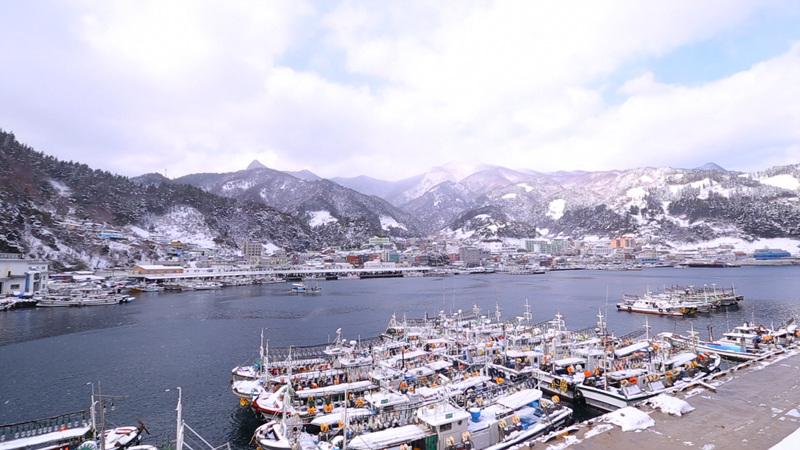 한국기행 - 겨울왕국 울릉도 2부 눈의 천국 나리분지