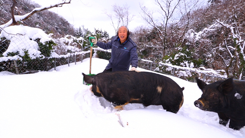 한국기행 - 겨울왕국 울릉도 3부 즐거운 나의 섬