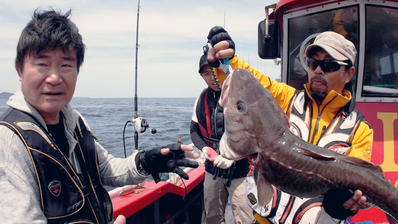 성난 물고기 - 봄날의 대구를 아시나요?