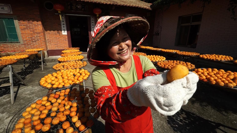 세계테마기행 - 지금 여기 우리,타이완 3부 오래된 길을 걷다 신주