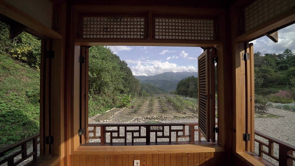 건축탐구 - 집 - 풍경을 담은 집