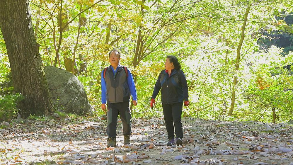 한국기행 - 가을산 표류기 5부 가을산 대물을 찾아