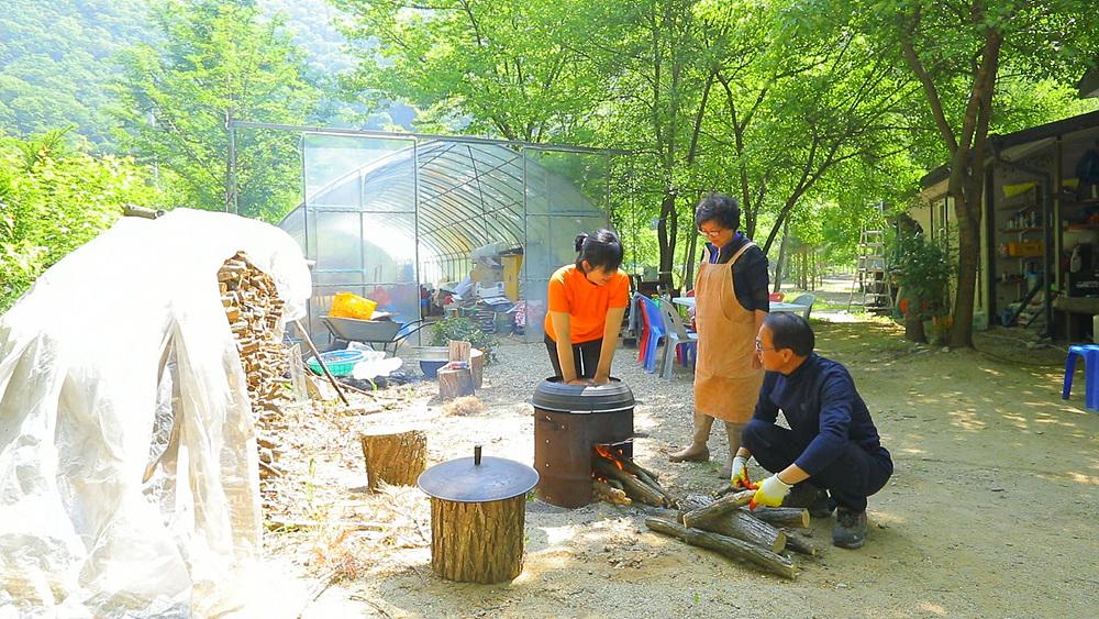 한국기행 - 나무에 취하다 2부 초록은 행복이어라
