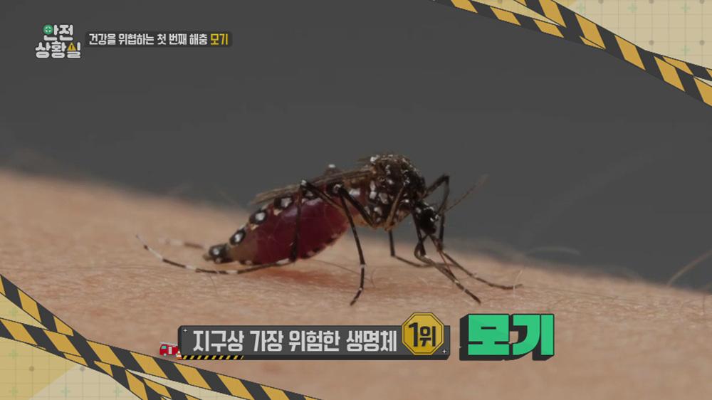 사건 브리핑 - 안전상황실 - 해충